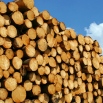 Intentions Paper Posted: Wood Processing Code of Practice
