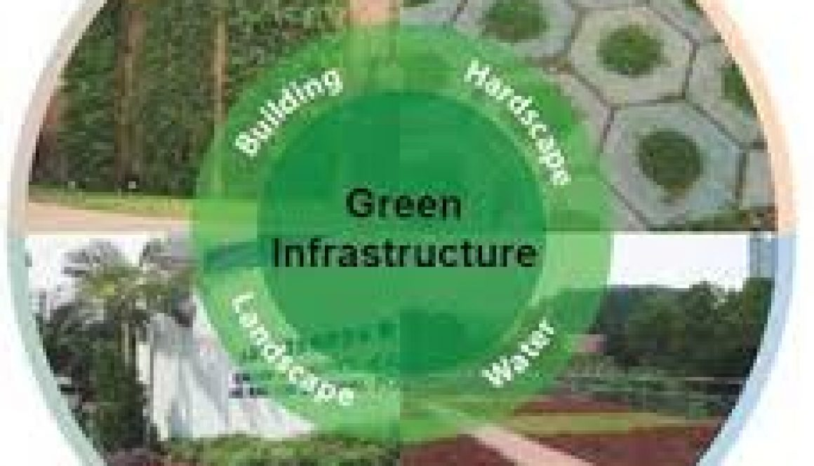 Green Infrastructure Session on May 18th!